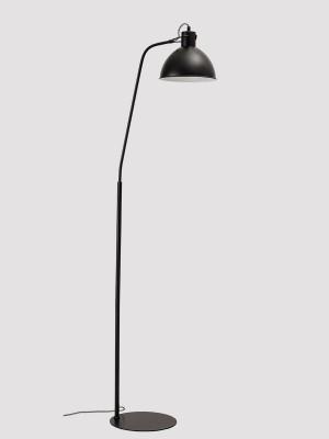 лампиони